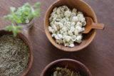 herbclass